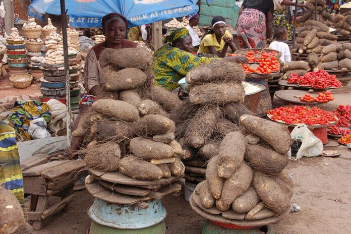 Food Crises Loom In Nigeria, Here's Why